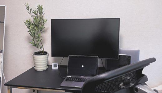 【ミニマリスト活動】部屋に観葉植物を置いたら優しくなれる気がした